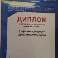 """""""Выбираю спорт!"""",  сентябрь 2017"""