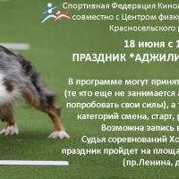 Соревнования Новичков в Красном Селе, 18.06.2016 г.