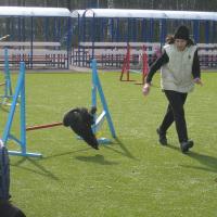 Мастер-классы от Марины Серовой, апрель 2012